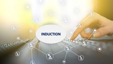 reprezentare grafică relații induction